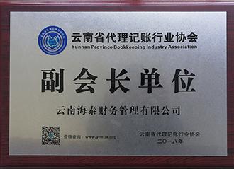 云南省代理记账协会 副会长单位2018